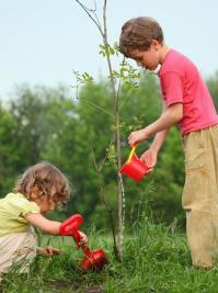 Planter-un-arbre_logo_item